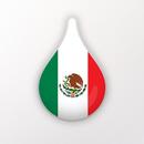 Drops:快速学会拉美西班牙语! APK