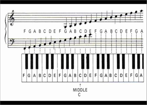 Piano Chords For Beginner For Android Apk Download