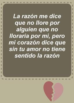 Heartbreak Quotes - Spanish screenshot 6