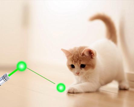 Cat laser pointer simulator poster
