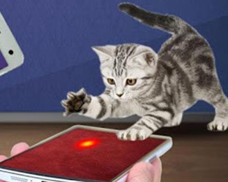 Cat laser pointer simulator apk screenshot