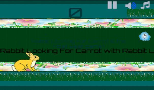 Rabbit Looking For Carrot apk screenshot