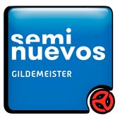 Seminuevos Gildemeister icon