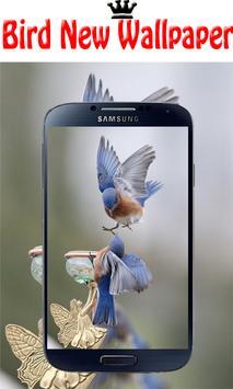 Wallpaper HD 2000+ Birds | 4K Beauty Background screenshot 1