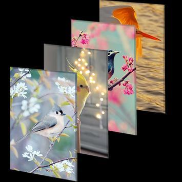 Wallpaper HD 2000+ Birds | 4K Beauty Background screenshot 5