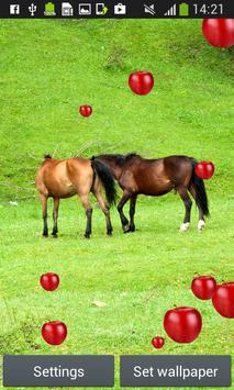 Horses Live Wallpapers screenshot 1