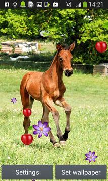 Horses Live Wallpapers screenshot 3