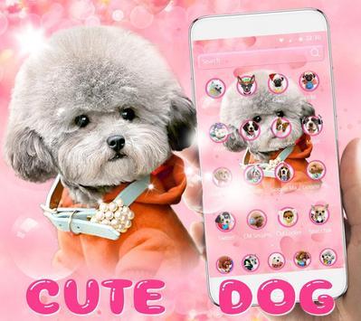 🐶Cute Dog Theme Pet Dog Wallpaper🐶 screenshot 2