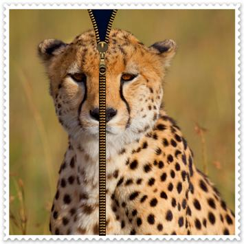 Cheetah Zipper Screen Lock apk screenshot