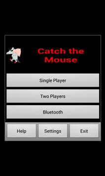 Catch the Mouse poster
