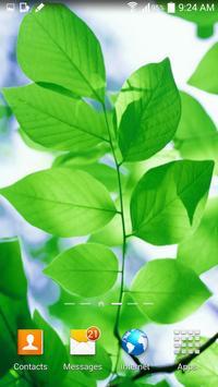 Leaf Live Wallpaper apk screenshot