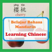 Belajar Bahasa Mandarin Mudah dan Offline icon