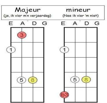 Learn Bass Guitar screenshot 8