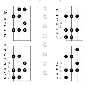 Learn Bass Guitar screenshot 1
