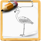 How To Draw Birds icon