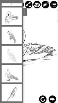 How To Draw Birds screenshot 1