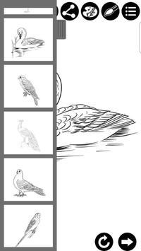 How To Draw Birds screenshot 8