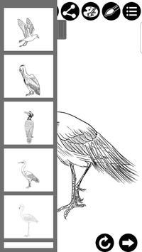 How To Draw Birds screenshot 9