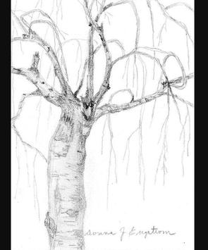 Learn to Drawing Trees apk screenshot