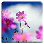 Leaves HD LiveWallpaper icon