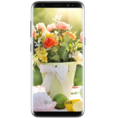 Spring Flowers App icon