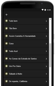 Lulu Santos Letras screenshot 5
