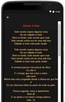 Lulu Santos Letras screenshot 7