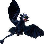 Dragon Toys Theme icon