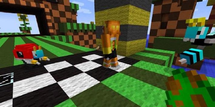 The Hedgehog Mod for MCPE poster