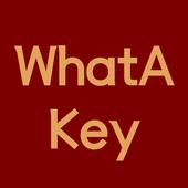 WhatAKey icon