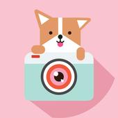 Cozy Camera-Photo&Video Editor icon