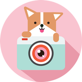 Cozy Camera-Photo&Video Editor icon