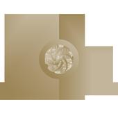 Mandala Scan icon