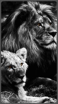 HD impressive Lion Wallpapers - Jaguar apk screenshot
