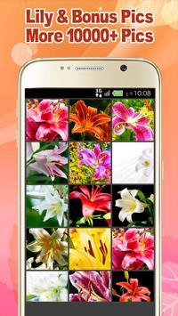 Lily Wallpaper screenshot 8