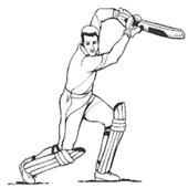 Lina Sports Cricket icon