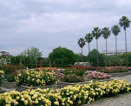 Botanical Garden screenshot 2