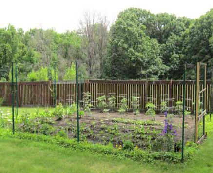 Backyard Vegetable Garden screenshot 5