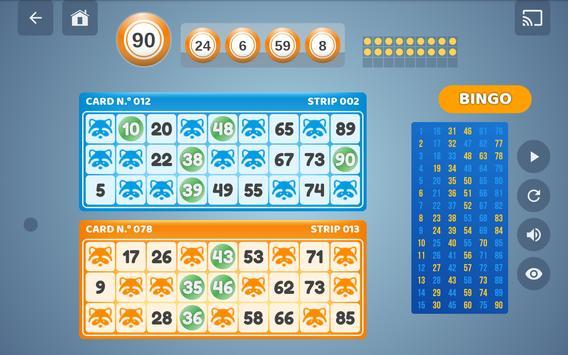 Bingo Set screenshot 12