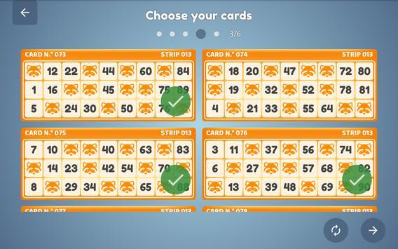 Bingo Set screenshot 13
