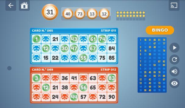Bingo Set screenshot 18