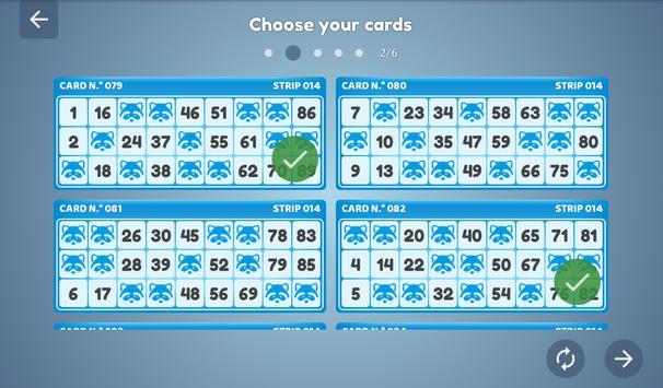Bingo Set screenshot 19