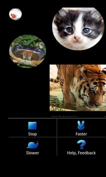 Photo Gallery (Fish Bowl) apk screenshot