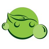 Green Wash icon