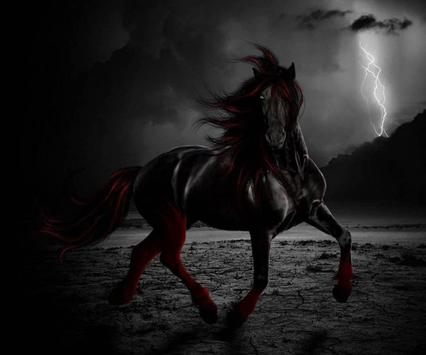 Horse Wallpaper apk screenshot