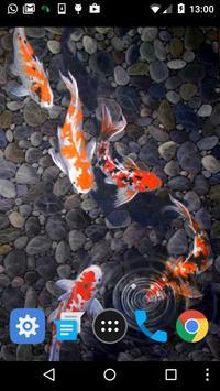 live koi pond wallpaper screenshot 1
