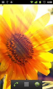 live wallpaper sunflower apk screenshot