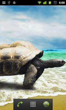 live wallpapers turtles apk screenshot