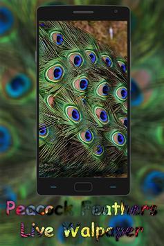 Peacock Feather live wallpaper screenshot 4