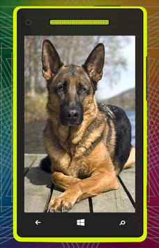German Shepherd Dog HD screenshot 3